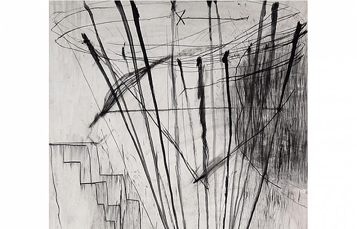 KICK No.2 - 100x70 cm, charcoal on paper (detail)