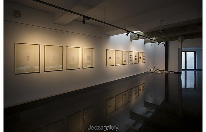 Exhibition Preview / Alex Mirutziu and Dan Beudean