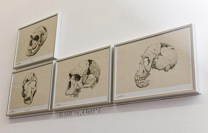 Ștefan Ungureanu, Hominid Evolutionary Pyramid, tehnică mixtă pe hârtie milimetrică, 2015